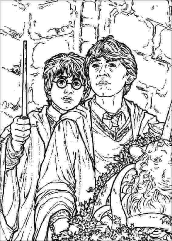 Harry and Ron coloring page