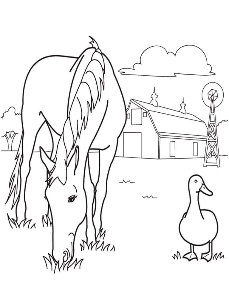 Horse At Farm Coloring Page