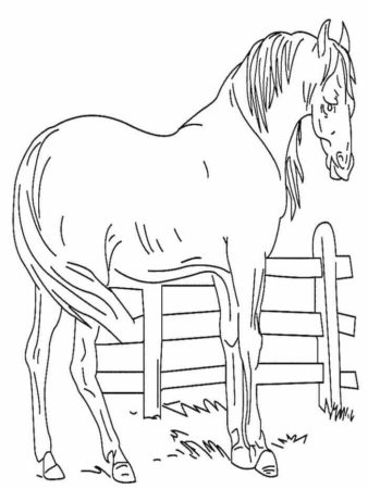 Horse At Stable Coloring Page