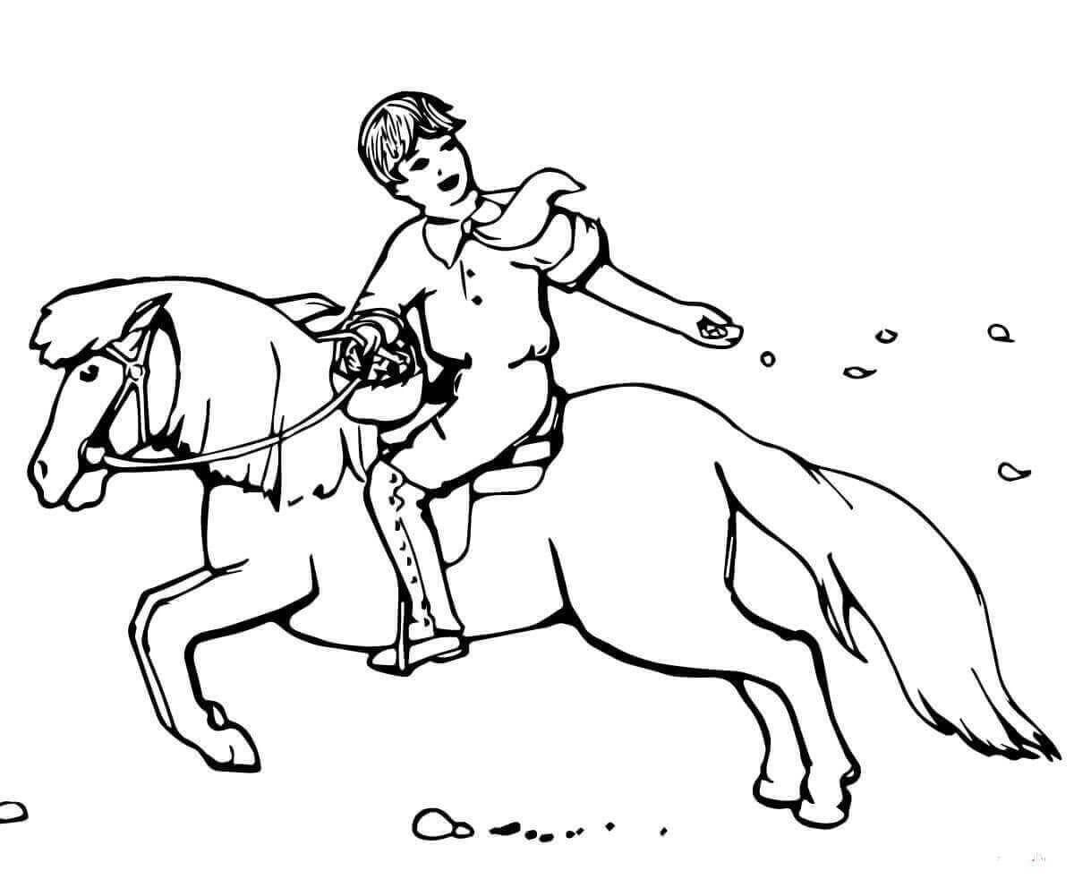 Horse Colouring Sheets Printable