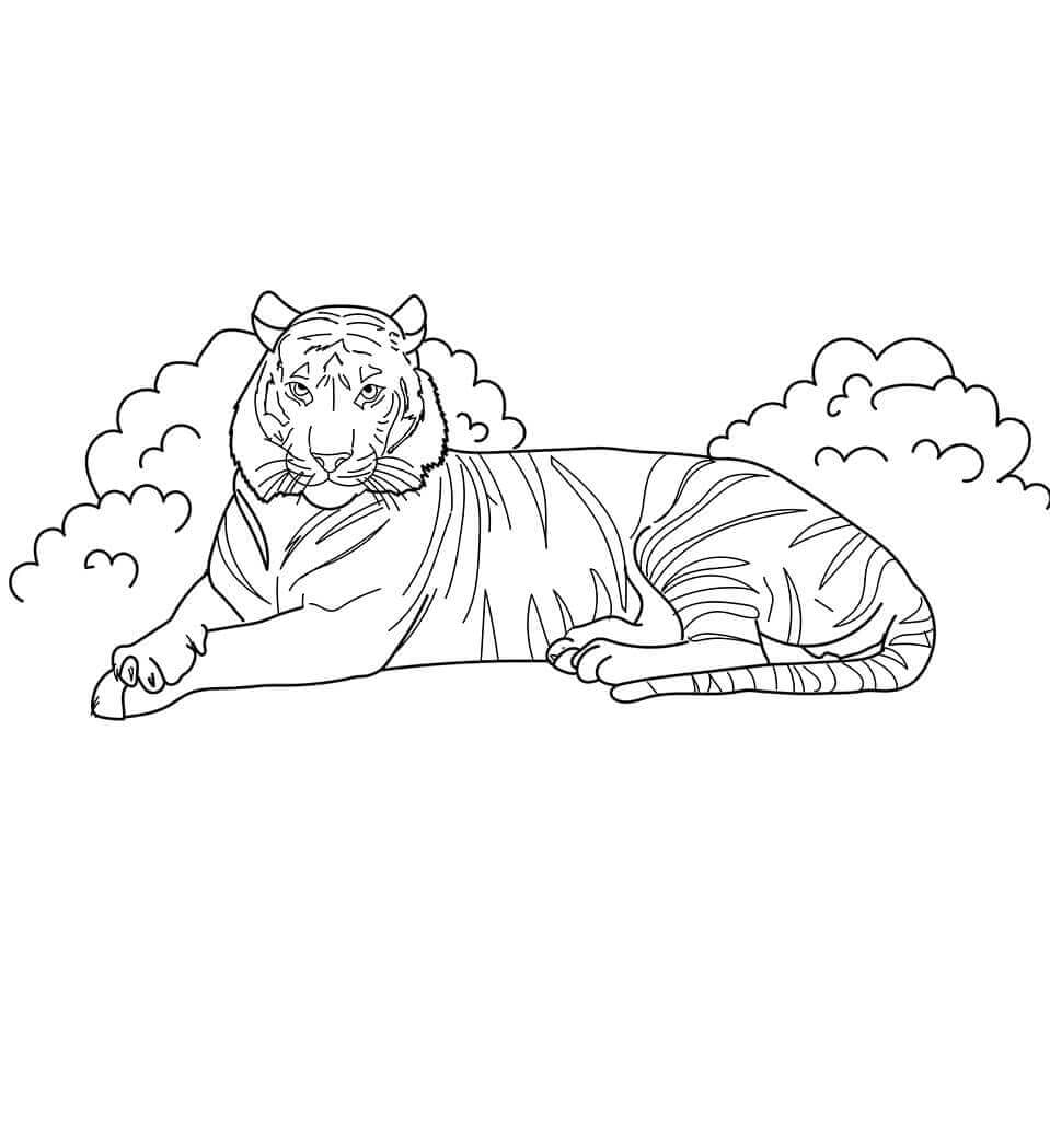 Indo Chinese Tiger coloring page