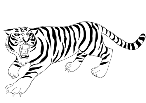 Printable Tiger Pictures