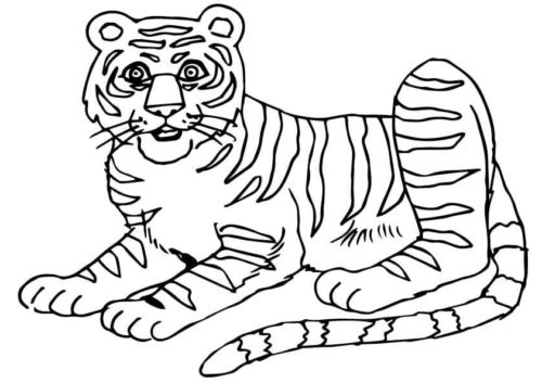 South China Tiger coloring page