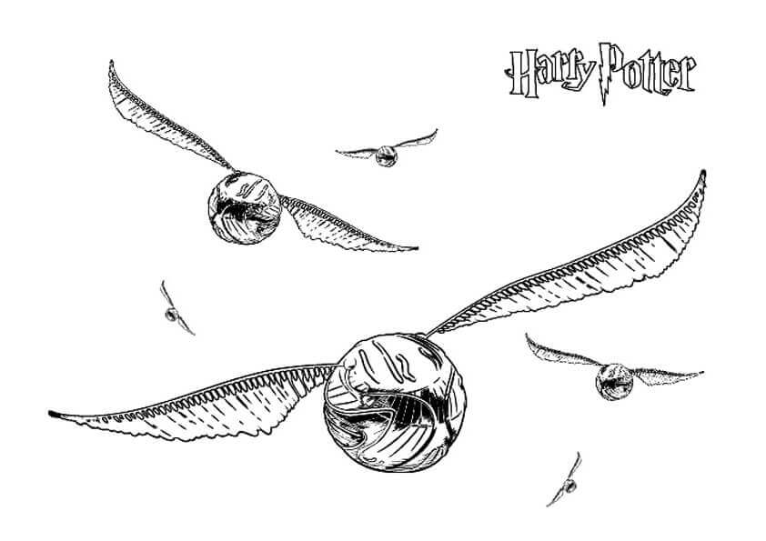 The Golden Snitch from Harry Potter coloring sheet