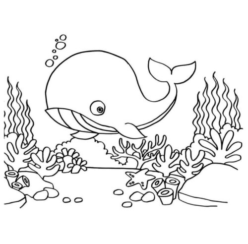 Whale In The Ocean coloring page