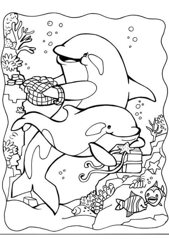 Coloring Pictures Of Dolphins