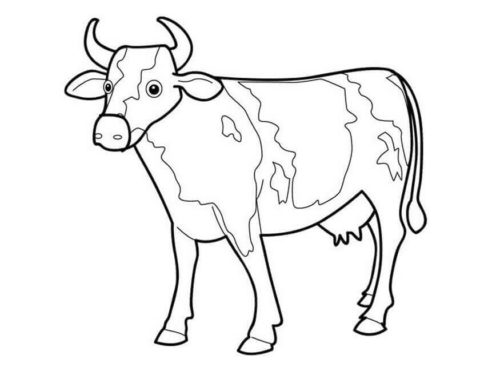 30 free cow coloring pages printable