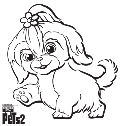 Free The Secret Life Of Pets 2 Coloring Pages Printable ...