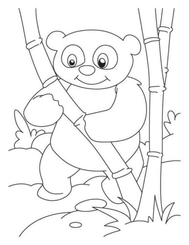 Free Panda Coloring Pages Printable