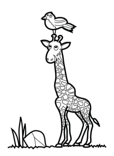 Giraffe Colouring Pages