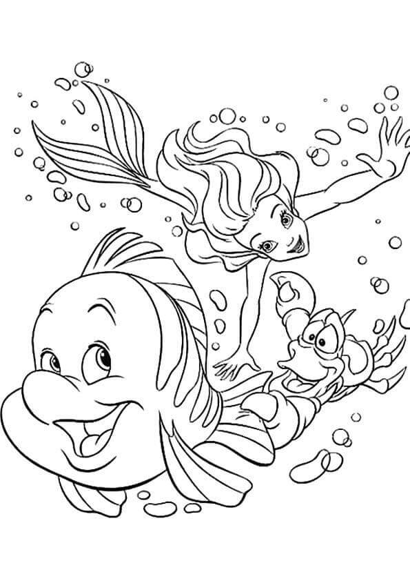 Little Mermaid Flounder And Sebastian