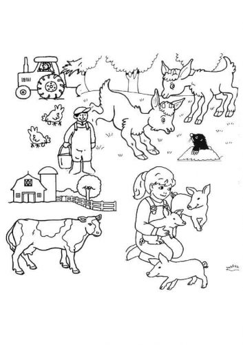 A Complete Farm Scene