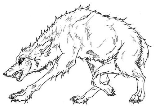 25 Free Wolf Coloring Pages Printable
