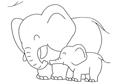 Baby Elephant With Mommy Elephant