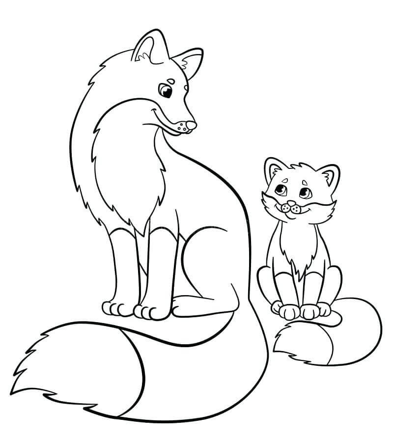 Baby Fox With Mummy Fox Coloring Page