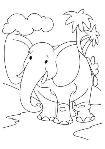 Elephant Coloring Pictures To Print