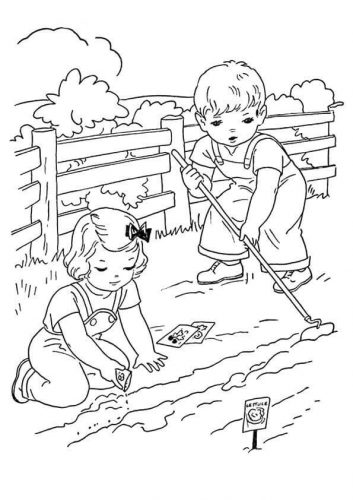 Kids Playing On Farm