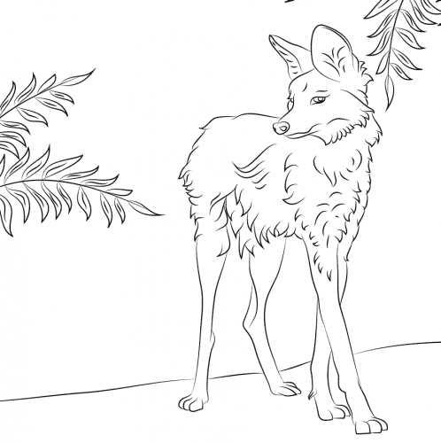 Maned Wolf Coloring Page
