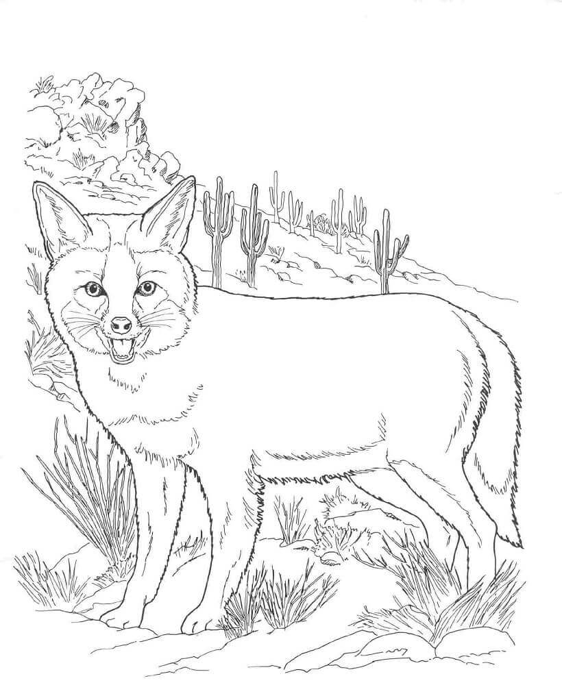 Realistic Fox Coloring Page