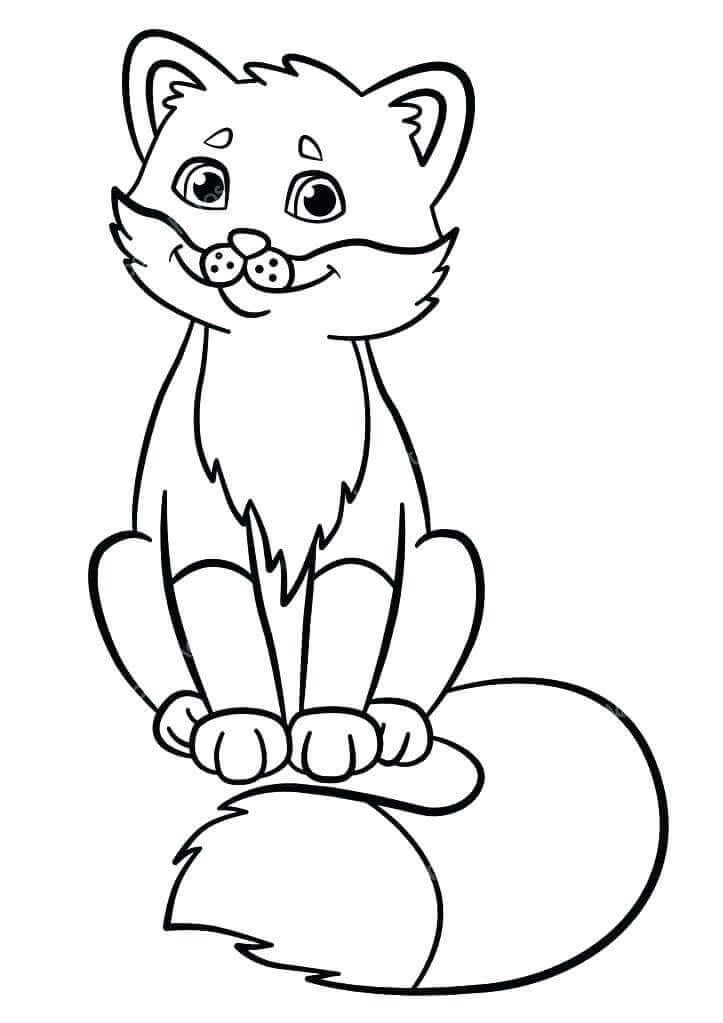 Red Fox Coloring Sheets