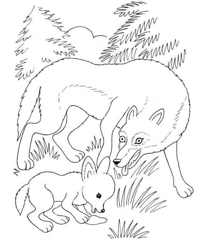 Wolf Cub With Mommy Wolf