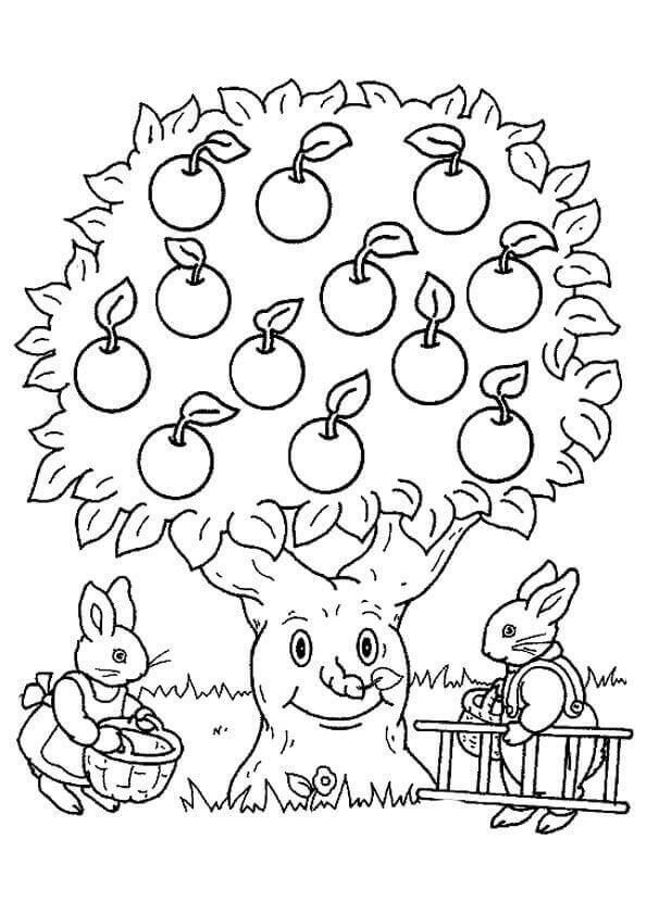 Apple Coloring Pages Printable