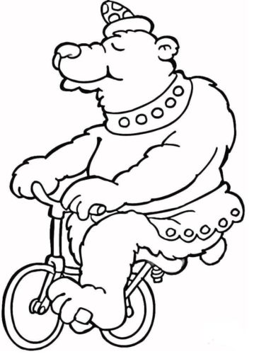 Bear Riding A Bicycle In Circus