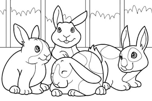 Bunnies Coloring Pages
