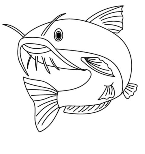 35 Free Fish Coloring Pages Printable