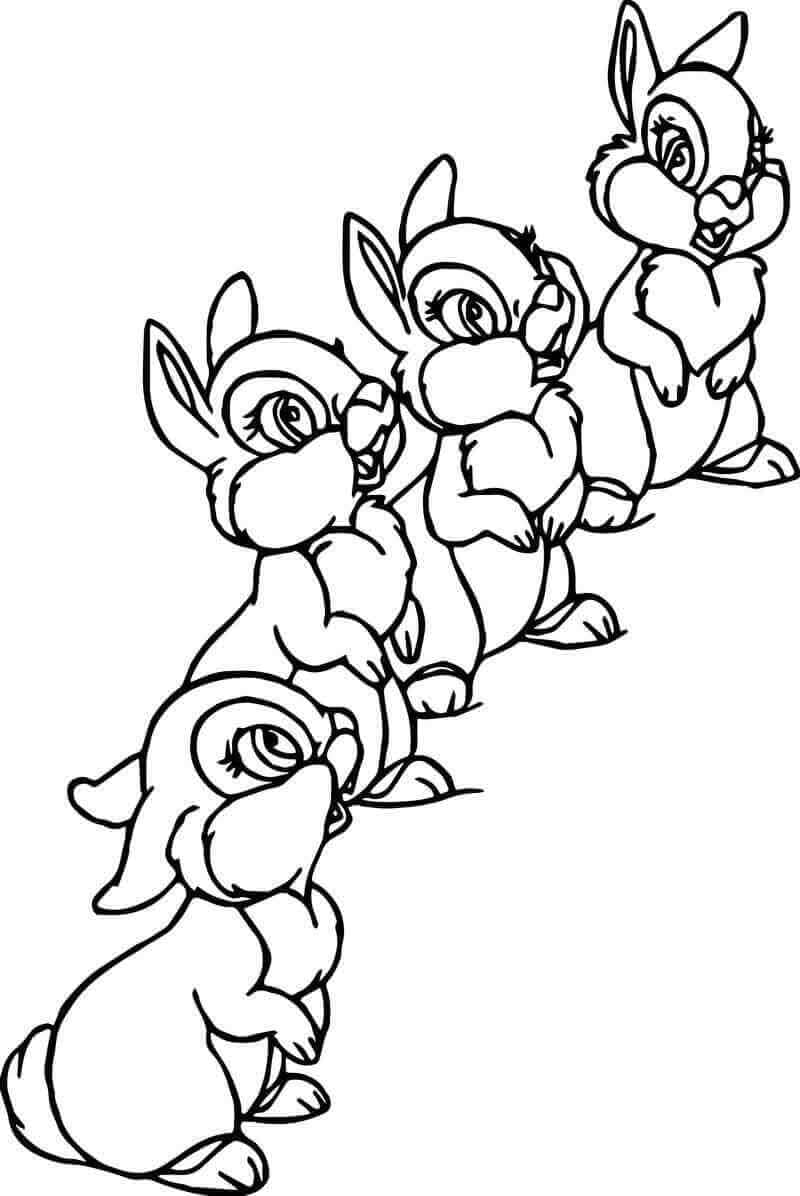 Coloring Pictures Of Bunnies