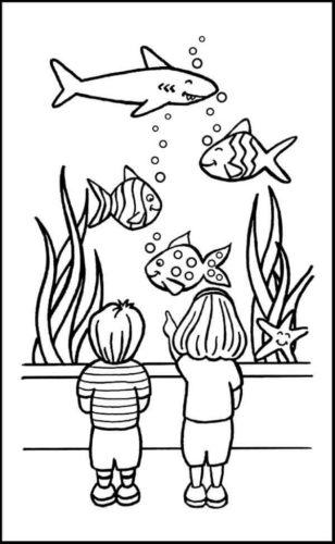 Kids Looking At Fish At The Aquarium
