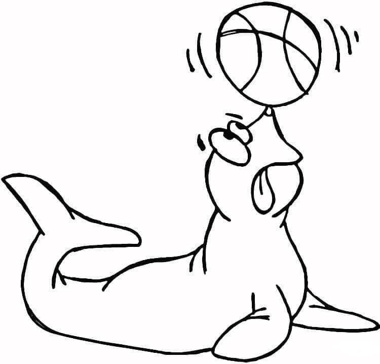 Seal Show Circus Coloring Sheet