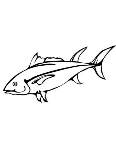 Tuna Fish Coloring Page