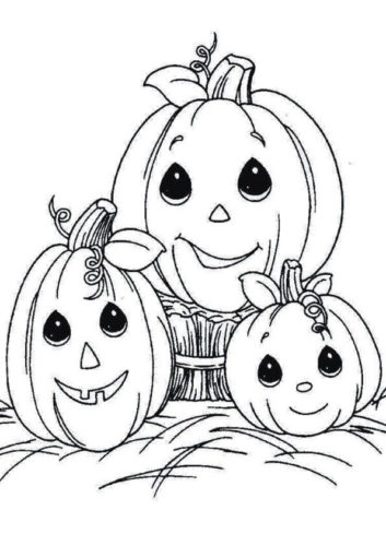 A Pumpkin Family