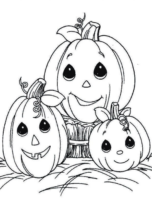 A Pumpkin Family