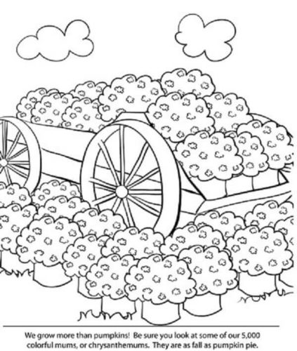 Coloring Pages Of Pumpkin Farm