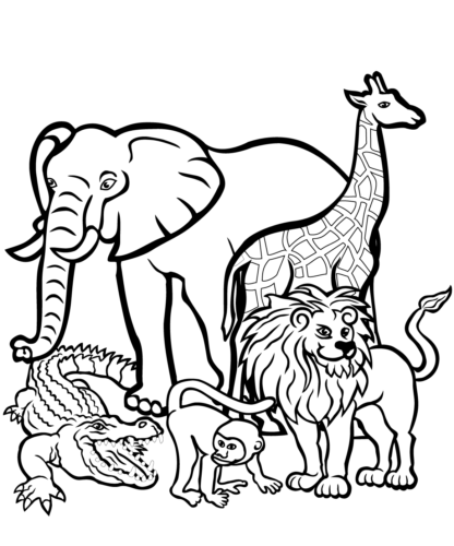 Lion With Other African Animals