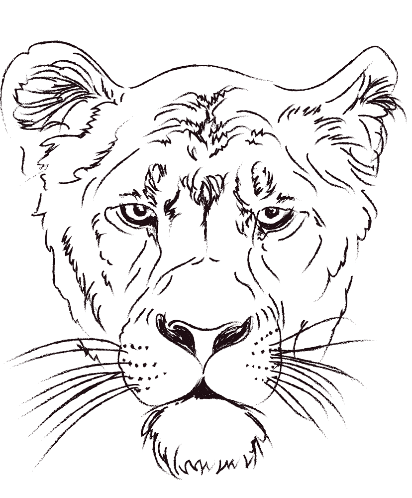 Lioness Head Coloring Page