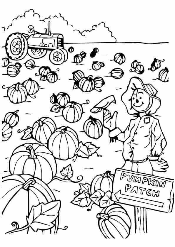 Pumpkin Patch Coloring Pages Printabe