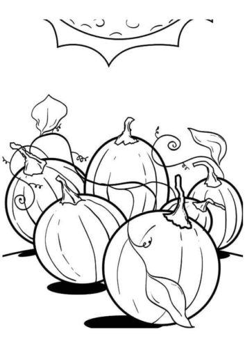 Pumpkin Patch Pages To Color