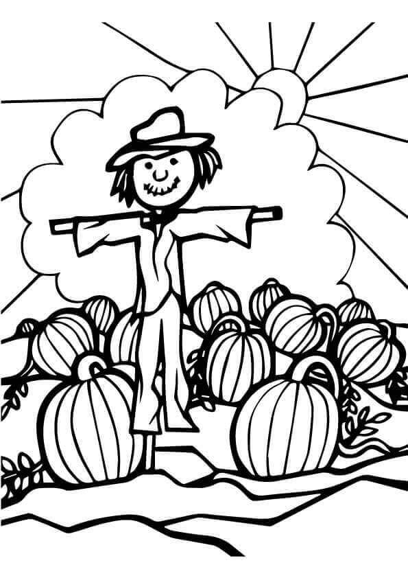 Scarecrow In The Pumpkin Patch Coloring Page