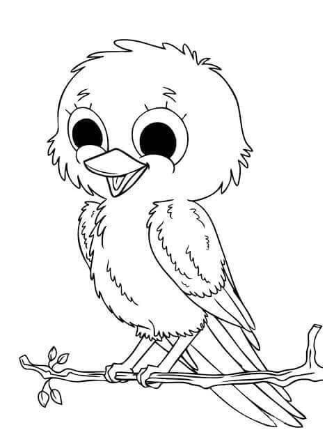 Cute Bird Coloring Page