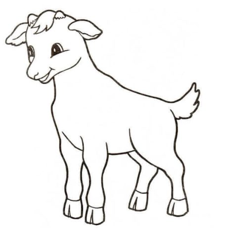 Cute Calf Coloring Page