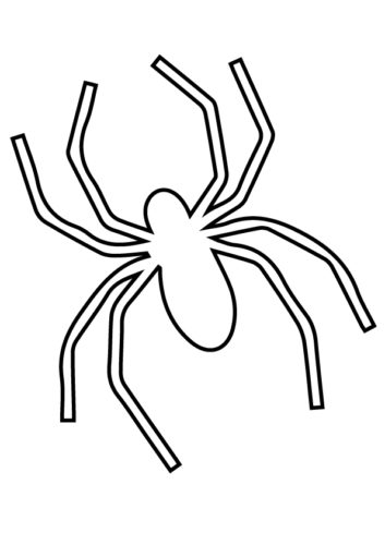 Fill Colors In The Spider