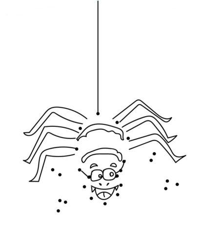 Spider Activity Sheet