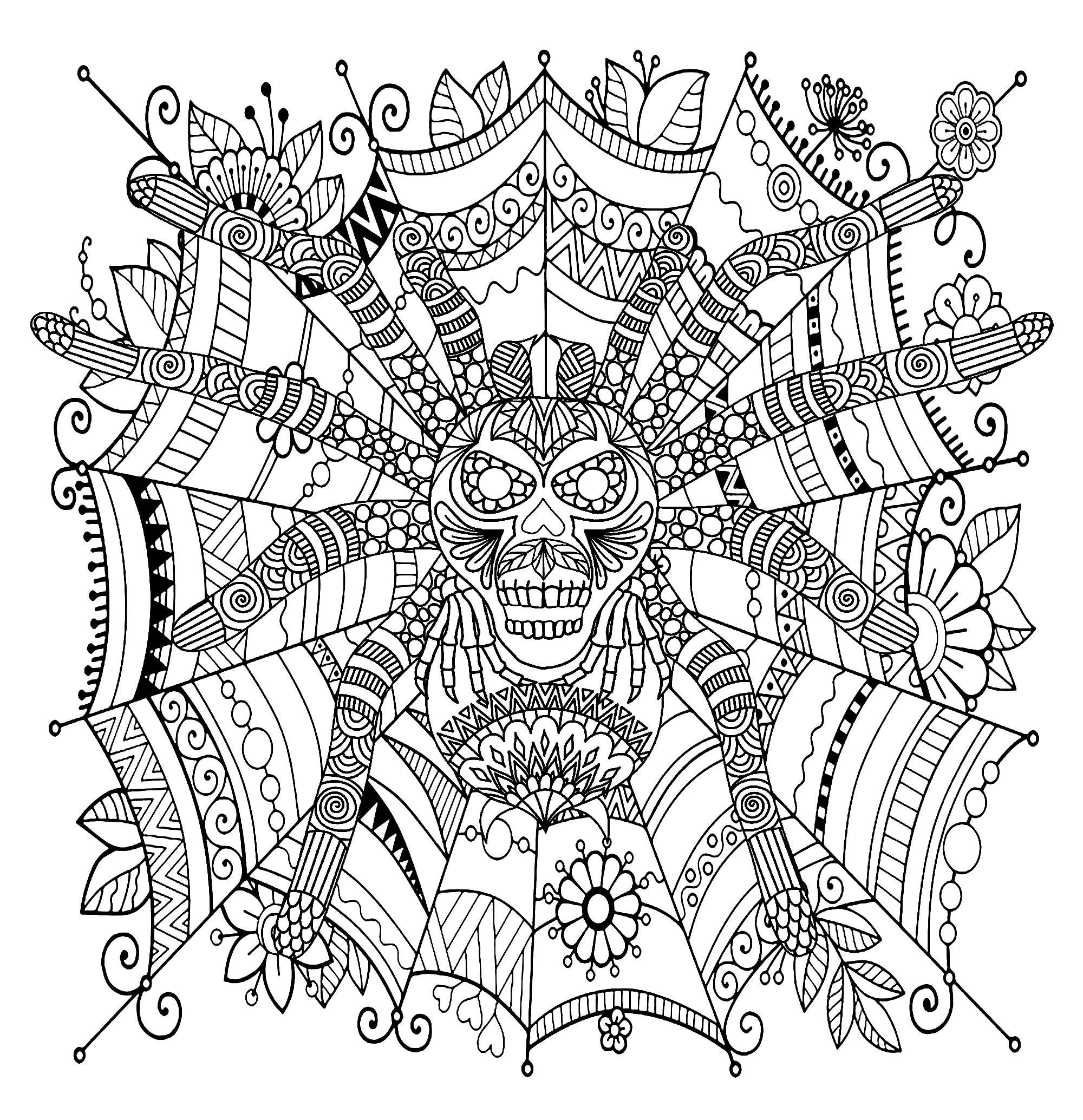 Spider Coloring Pages For Adults
