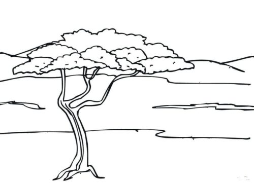 Free Printable Tree Coloring Pages For Kids | 365x500