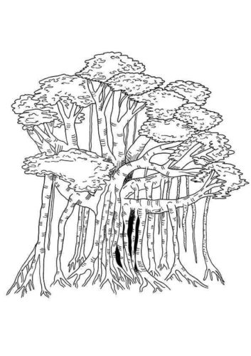 Banyan Tree Coloring Page