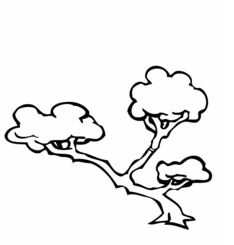 Bonsai Tree coloring page