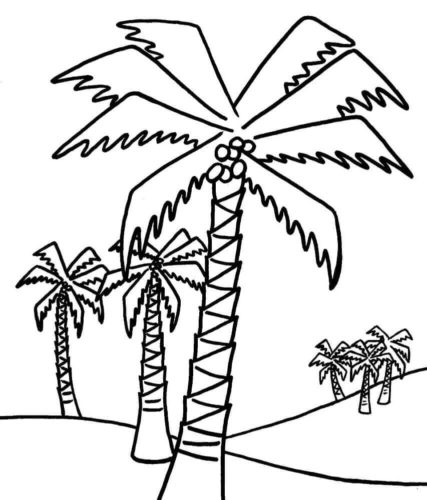 Coconut Tree Coloring Page